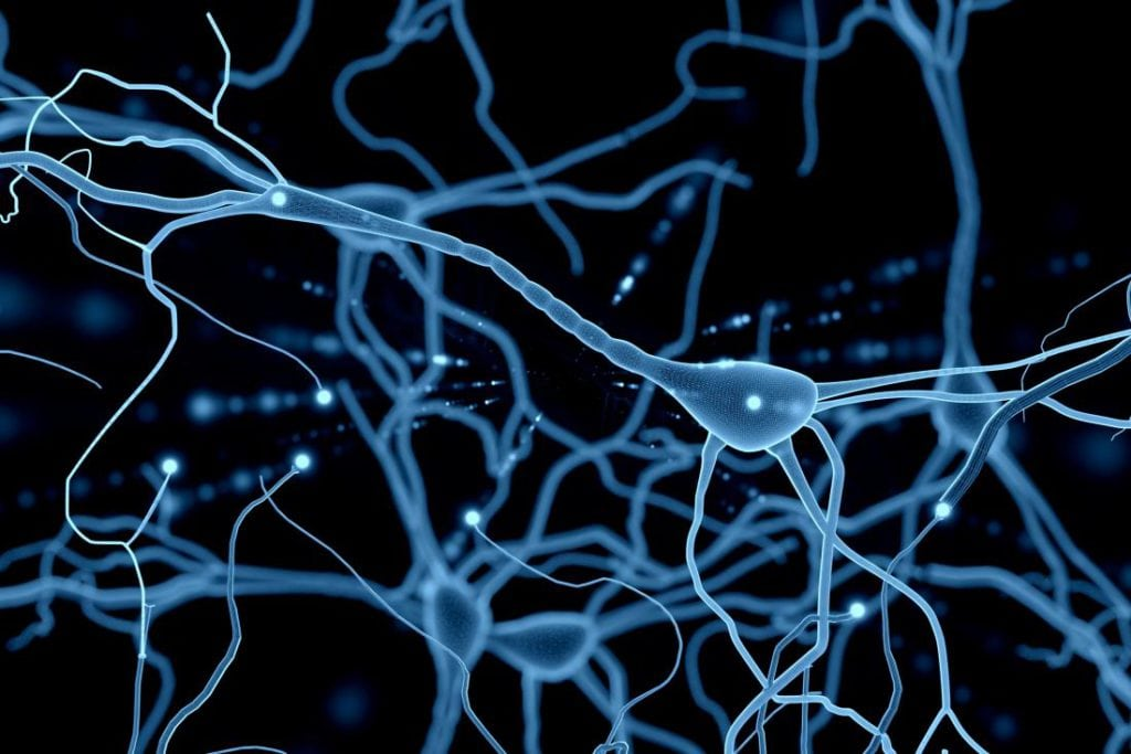 Technologická singularita - neurón