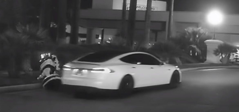 Tesla Promobot