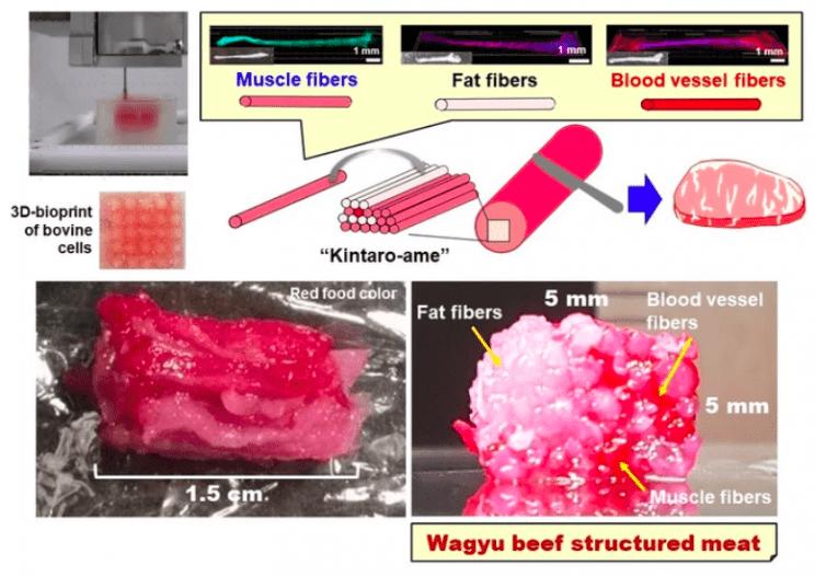 výroba Wagyu steak
